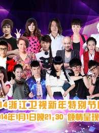 浙江卫视2014新年特别节目
