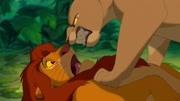 狮子王:一只年长的猴子发现了小狮子王辛巴还活着的秘密