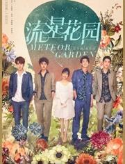 流星花園 DVD版
